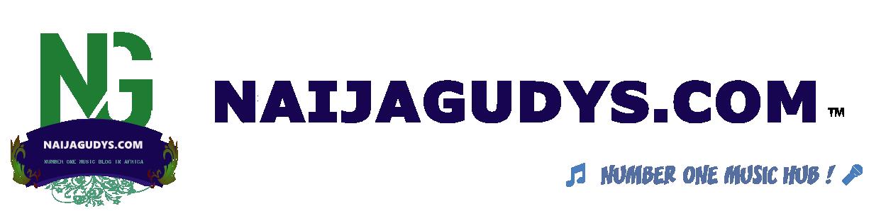 Naijagudys Logo